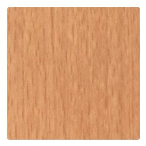 Copper-Beech-206A